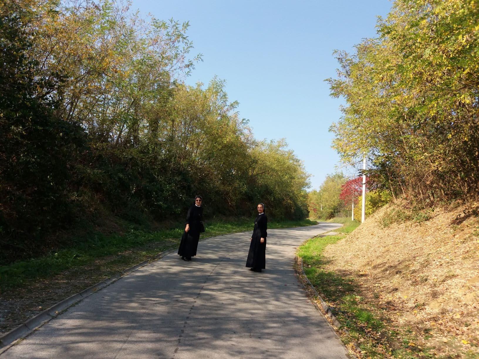 Slavonski brdo 6