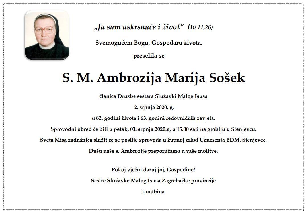 S. ambrozija